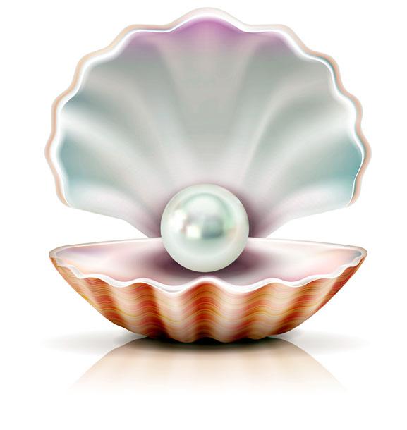 perla-resilienza-ostrica